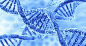 LA CONSULTAZIONE MEDICA E PSICOLOGICA  NEL RISCHIO GENETICO