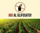 NUOVE ACCUSE AL GLIFOSATO